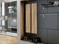 Мебель для прихожей: основные элементы, особенности применения и варианты дизайна