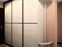 Шкаф-купе в прихожую — обзор самых интересных моделей и подробное описание их размещения